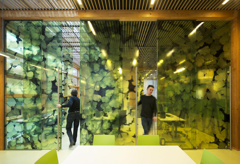 Community School The Frog, Amsterdam  –  Pleasant workspace